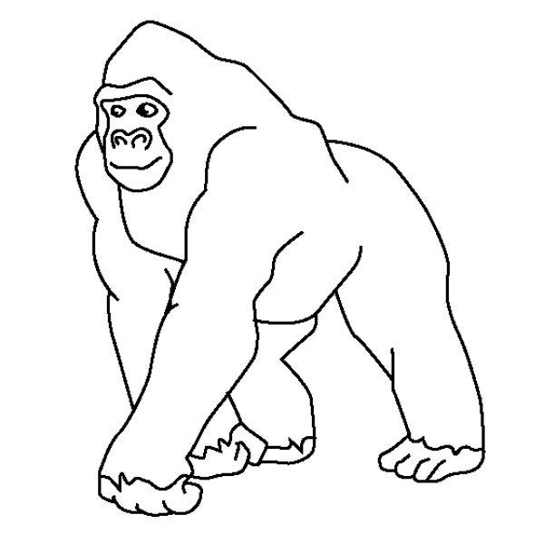 Imágenes de gorilas para colorear :: Imágenes y fotos